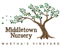 Middletown Nursery - $25 Lift Certificate